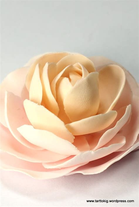 flower tutorial 20 best images about fondant camelia on
