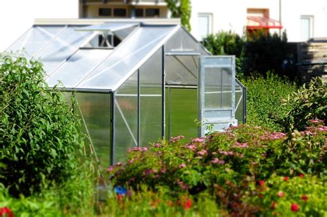 small backyard greenhouse how to build a small greenhouse in 8 easy steps