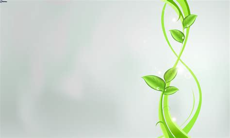 imagenes de hojas verdes hojas verdes