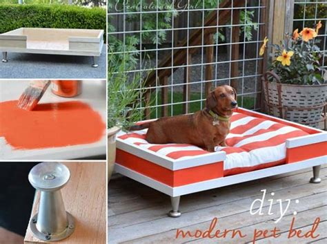 pet craft projects 20 diy pet craft projects that will change the of