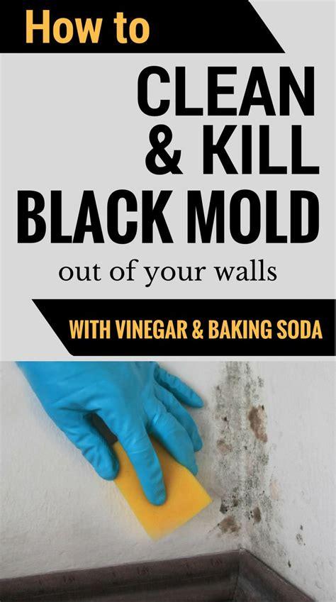 how to clean bathroom with vinegar best 25 bathroom mold ideas on pinterest mold in