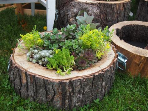 Tree Log Flower Planter by 25 Best Ideas About Log Planter On Diy Garden