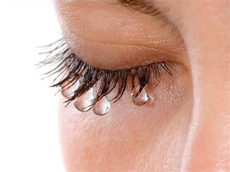imagenes de ojos que lloran sangre me lloran siempre los ojos 191 por qu 233 cl 237 nica barraquer