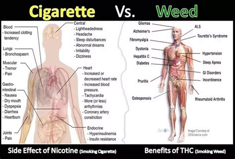 can smoking weed cause mood swings what is the relation between marijuana consumption and