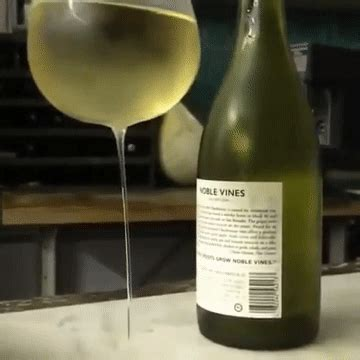 wobble wine glass gif find share  giphy