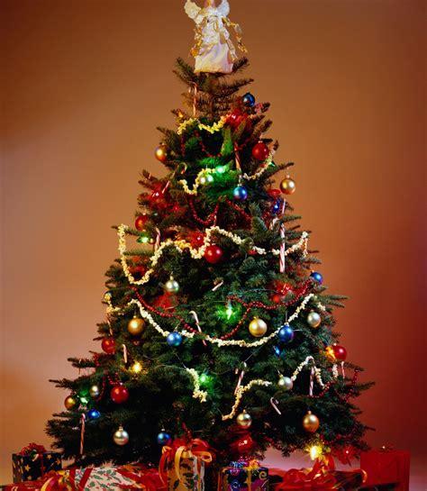 5 225 rboles de navidad best 28 precios arbol de navidad 28 best 28 10 225