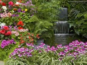 beautiful waterfalls with flowers desktop wallpapers animals wallpapers flowers wallpapers