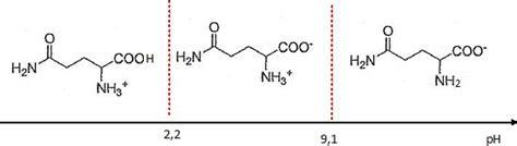 tracer un diagramme de prédominance acides amin 233 s et peptides capes physique chimie 2013