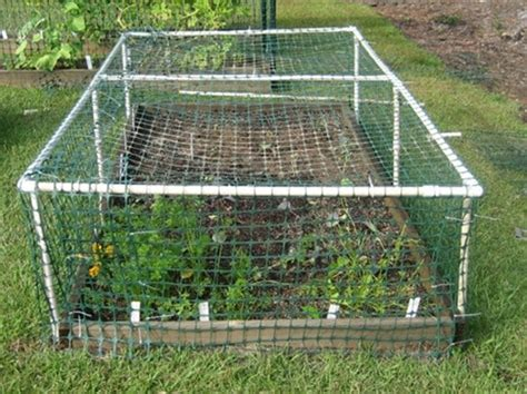Vegetable Garden Netting Frame 25 Creative Pvc Pipe Projects For Gardeners