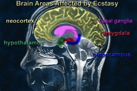 Ecstasy Detox Symptoms by 550px