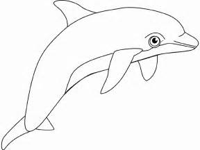 coloring pages of dolphins dolphin coloring pages 2 coloring pages to print