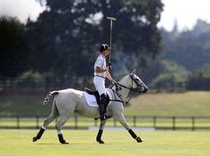 More Ponies For Polo by Polo Ponies On Ponies Prince Harry And