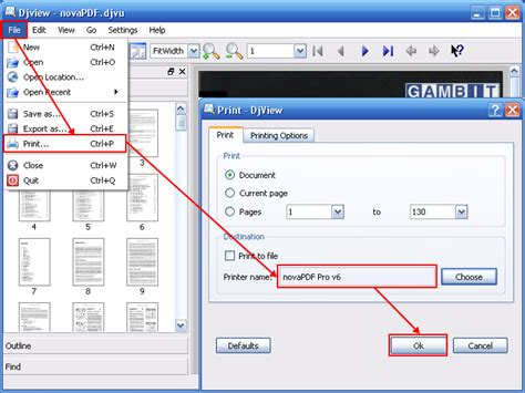 djvu format how to open how to convert djvu file to pdf or other more common file