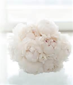 White Peony Flower - white peony bouquet floristry pinterest