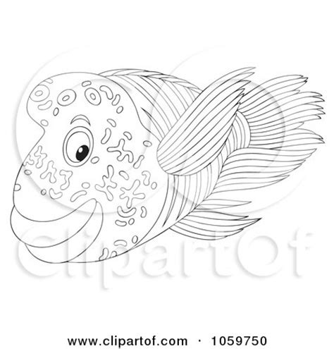 coloring pages of saltwater fish seaweed outline royalty free rf sketch coloring page