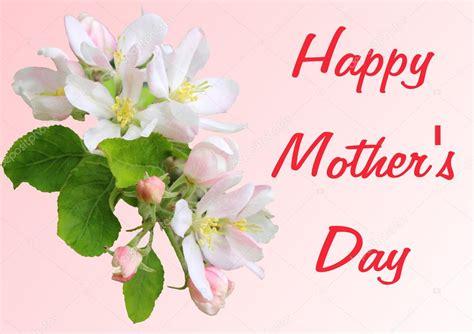 imagenes en ingles para una mama rama de flor de apple con los saludos del d 237 a de la madre