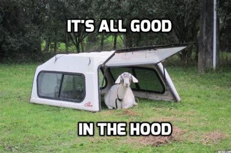 Farming Memes - funny farming memes tumblr