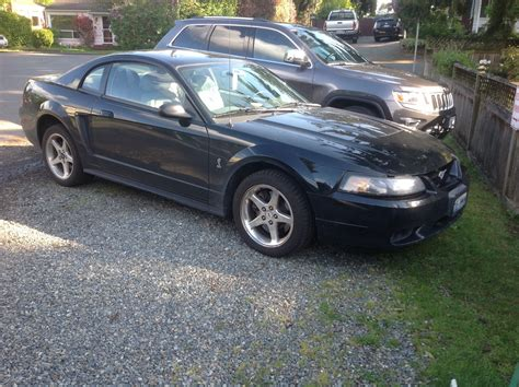 2001 ford mustang value ford mustang svt cobra questions what is the value of my