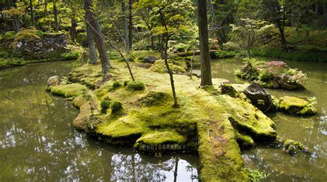 fine art photography rita wong photography kyoto japan saiho ji moss garden