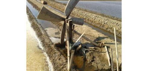 Lu Tenaga Air Garam ada ratusan kincir angin di lahan pembuatan garam merdeka