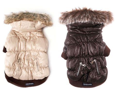 puppy winter coat puffer style parka winter s coat charmonix and whistler bowhouse simply the best