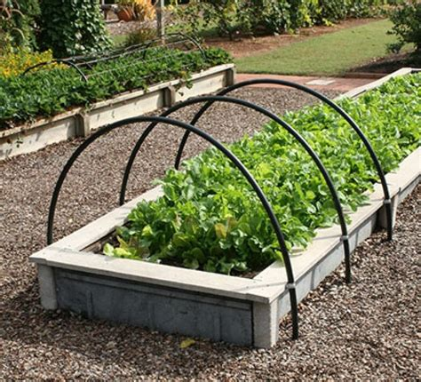 10 ideas about raised vegetable gardens on