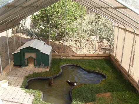 backyard ducks housing best 25 duck coop ideas on pinterest duck pens