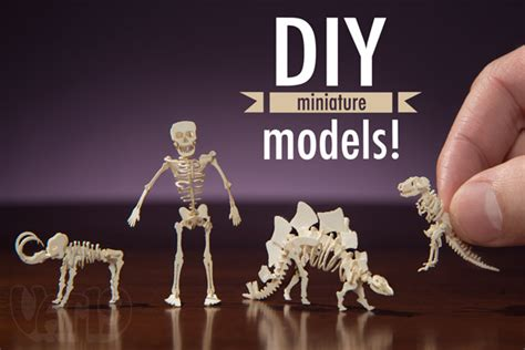 Make Your Own Paper Skeleton - tinysaurs diy small scale skeletal paper models