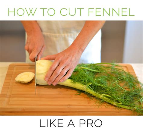 kitchen tip how to cut fennel bulbs the emeals blog