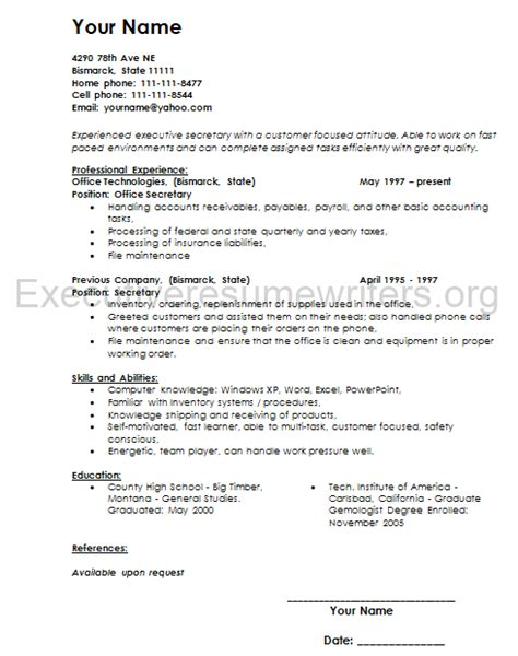 professional executive resume sle resume