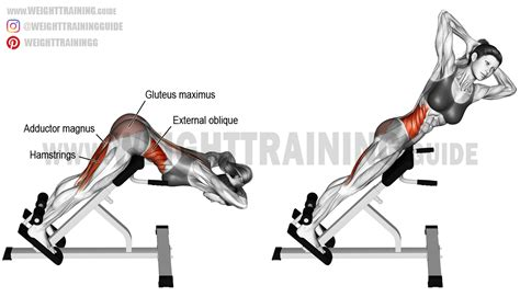 twisting hip extension and leg and glute exercises hip extension exercise