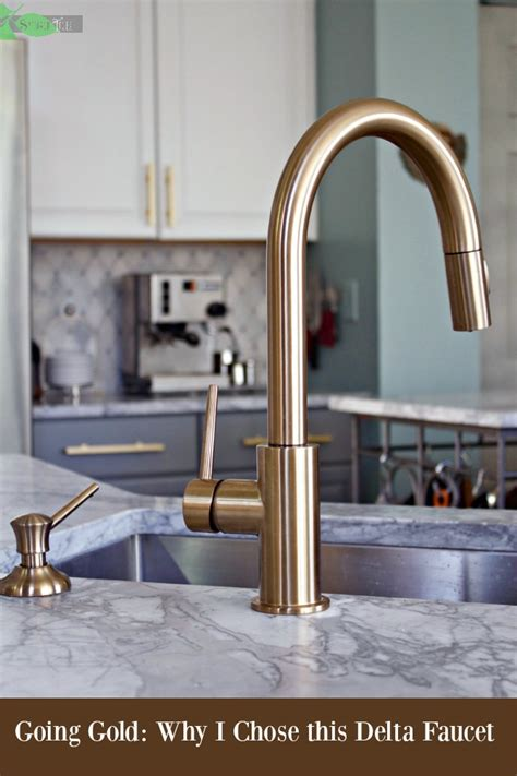 Delta Gold Trinsic Kitchen Faucet, Chic and Super Functional in Champagne Bronze   Spinach Tiger