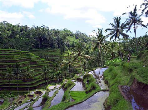 wallpaper alam pedesaan indonesia pemandangan alam pegunungan www imgkid com the image