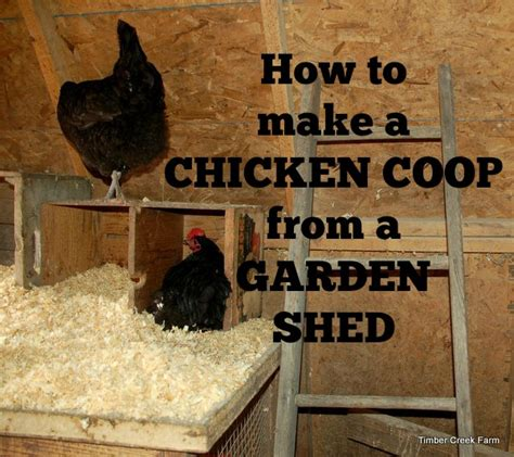 make a chicken coop from a garden shed timber creek farm