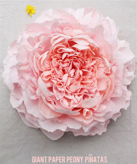 How To Make Paper Flowers Out Of Coffee Filters - corner paper peony pi 241 atas