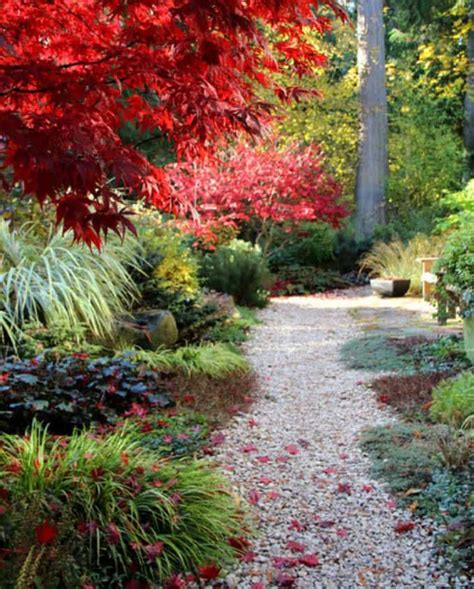 garden path ideas 25 most beautiful diy garden path ideas a of rainbow