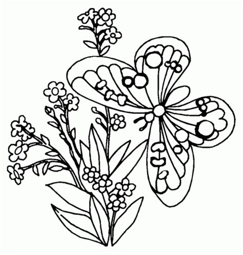 coloring pages of butterflies and caterpillars butterfly coloring pages coloring ville