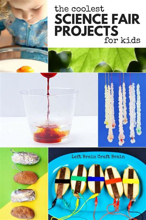 science activities for kids i am and for kids on pinterest 17 best images about hands on stem on pinterest science