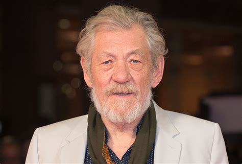 gandalf actor you shall not pass lord of the rings will ian mckellen play gandalf in
