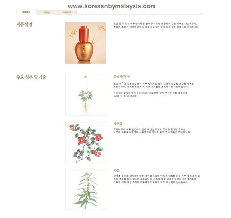Sulwhasoo Snowise Ex Whitening Spot Serum 50ml sulwhasoo concentrated ginseng renewing essential malaysia
