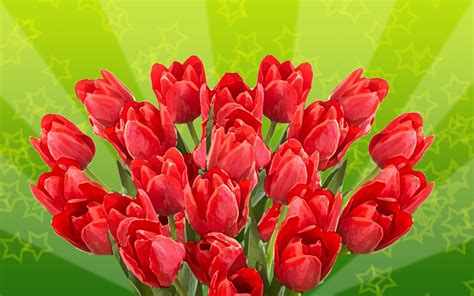 google images flower google images flowers wallpaper wallpapersafari