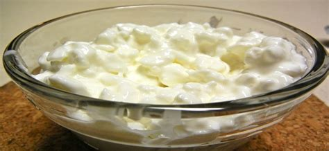 What Tastes With Cottage Cheese by Athletic Xtreme Articles News How To Make Cottage