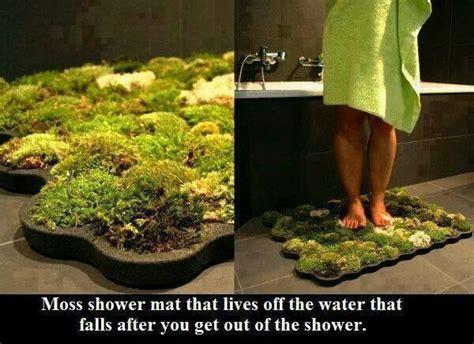 Live Moss Bath Mat by How To Make A Moss Shower Mat