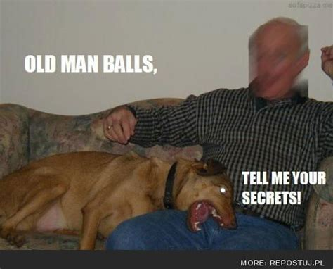 hilarious click on the picture to see hundreds more jeremy s house of funny pinterest