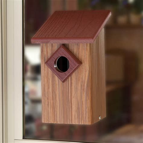 duncraft com duncraft observation window bird house