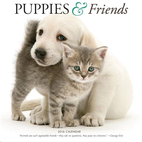 puppies and friends 18 charming pup inspired calendars for 2016
