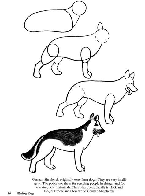 german shepherd how to how to draw german shepherds