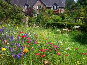 wildlife friendly gardens green earth landscape
