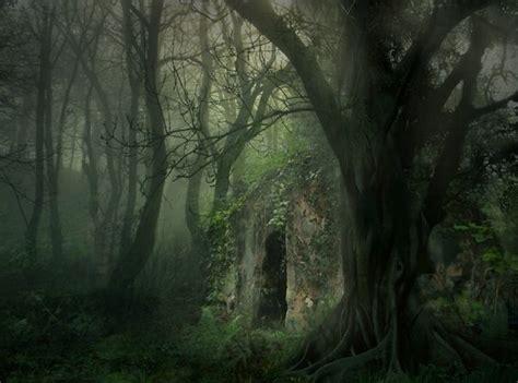 dark forest night image1 jpg fairy forest at night wallpaper gothic art gallery dark