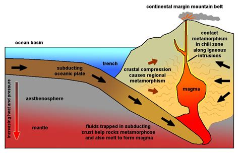 how is chagne made what is the relationship between metamorphism and plate